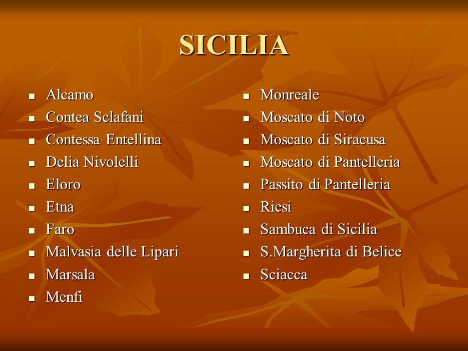 SICILIA Alcamo Contea Sclafani Contessa Entellina Delia Nivolelli