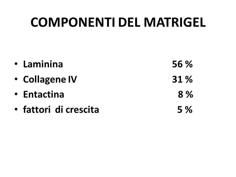 COMPONENTI DEL MATRIGEL