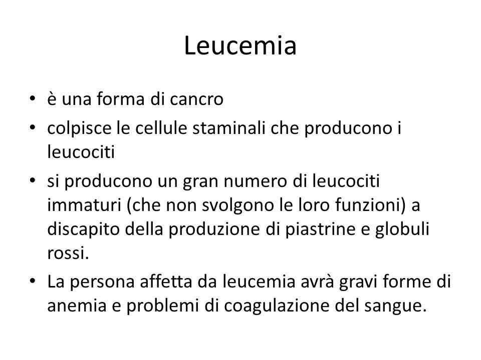 Leucemia è una forma di cancro