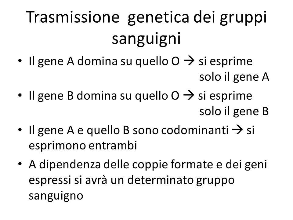 Trasmissione genetica dei gruppi sanguigni