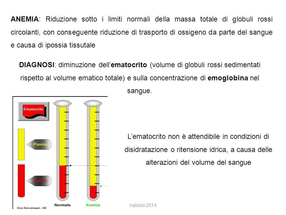 ANEMIA: Riduzione sotto i limiti normali della massa totale di globuli rossi circolanti, con conseguente riduzione di trasporto di ossigeno da parte del sangue e causa di ipossia tissutale