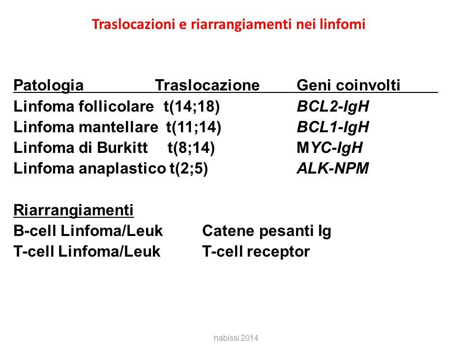 Traslocazioni e riarrangiamenti nei linfomi