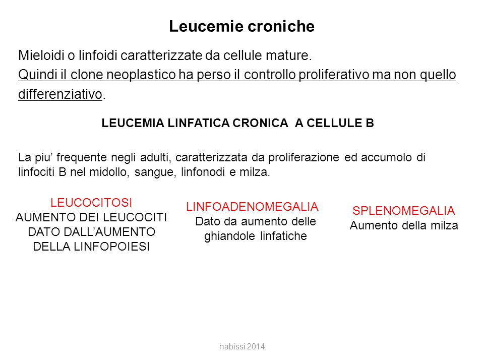 LEUCEMIA LINFATICA CRONICA A CELLULE B