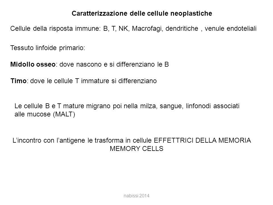 Caratterizzazione delle cellule neoplastiche