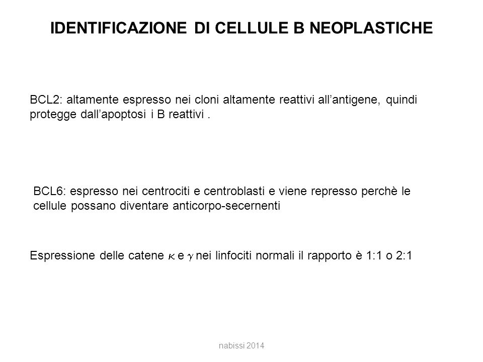 IDENTIFICAZIONE DI CELLULE B NEOPLASTICHE