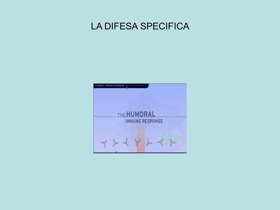 LA DIFESA SPECIFICA