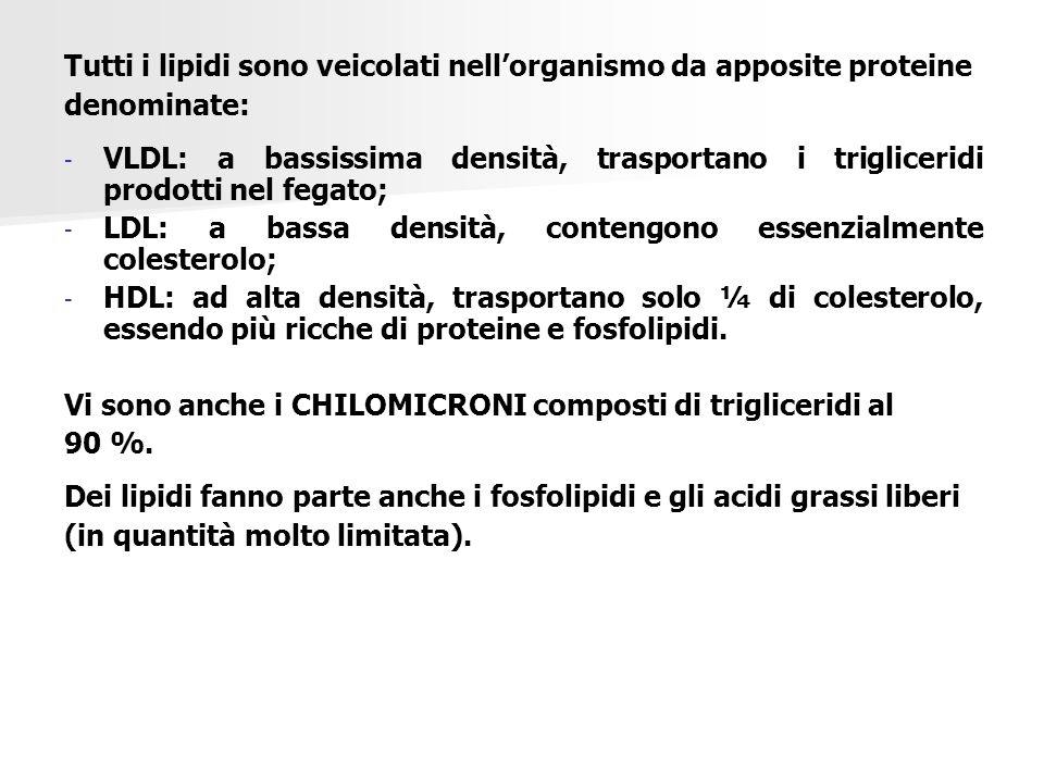 Tutti i lipidi sono veicolati nell'organismo da apposite proteine