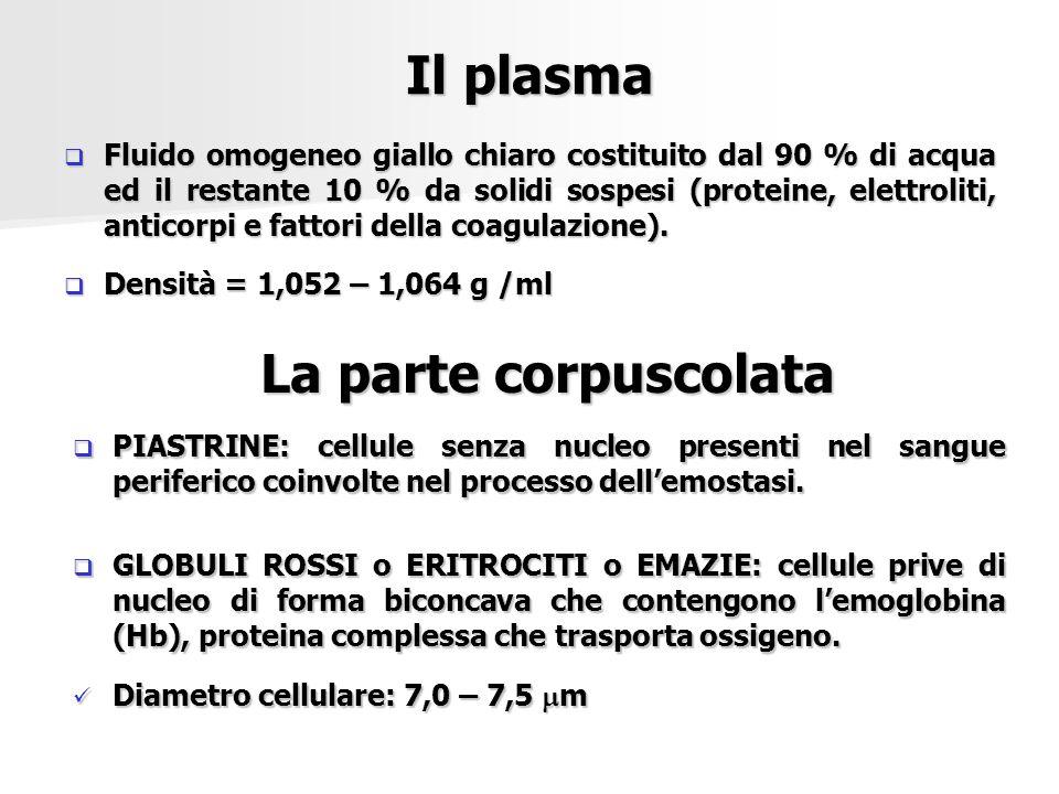 Il plasma La parte corpuscolata