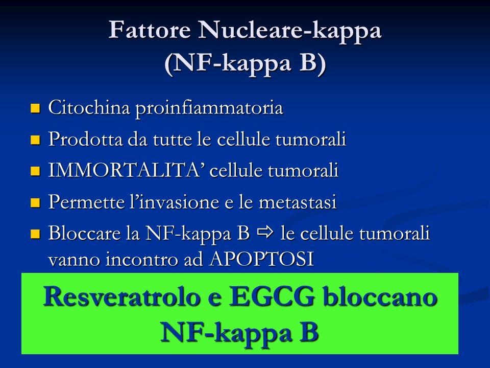 Fattore Nucleare-kappa (NF-kappa B)