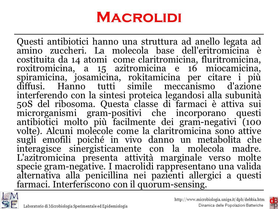 Macrolidi