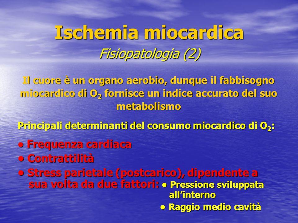 Ischemia miocardica Fisiopatologia (2) • Contrattilità