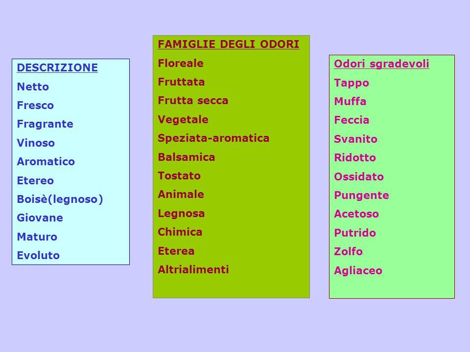 FAMIGLIE DEGLI ODORI Floreale. Fruttata. Frutta secca. Vegetale. Speziata-aromatica. Balsamica.