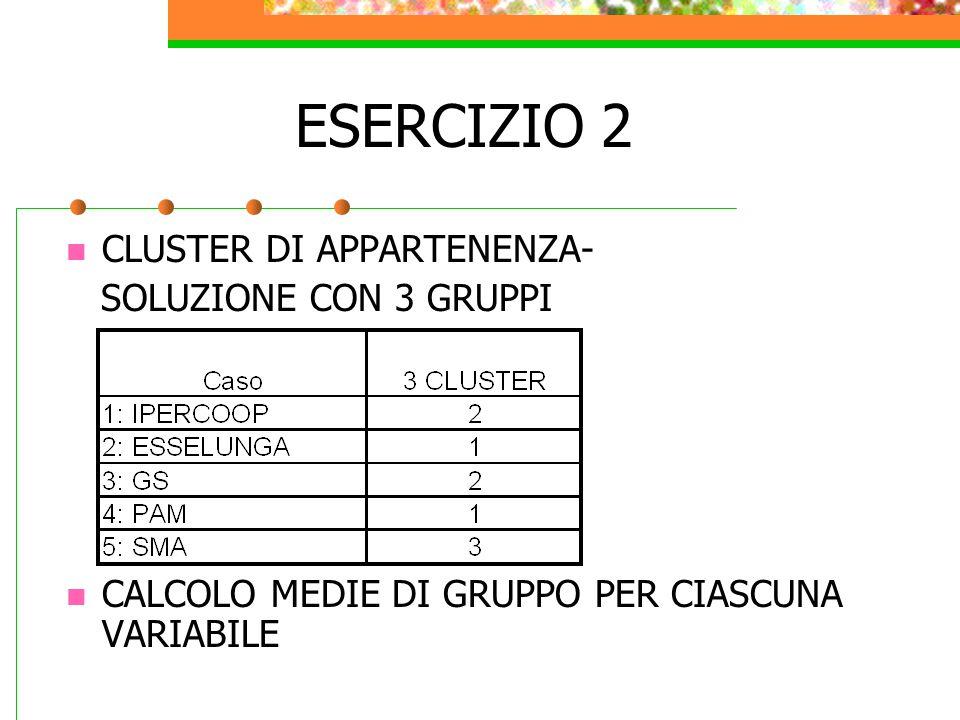 ESERCIZIO 2 CLUSTER DI APPARTENENZA- SOLUZIONE CON 3 GRUPPI