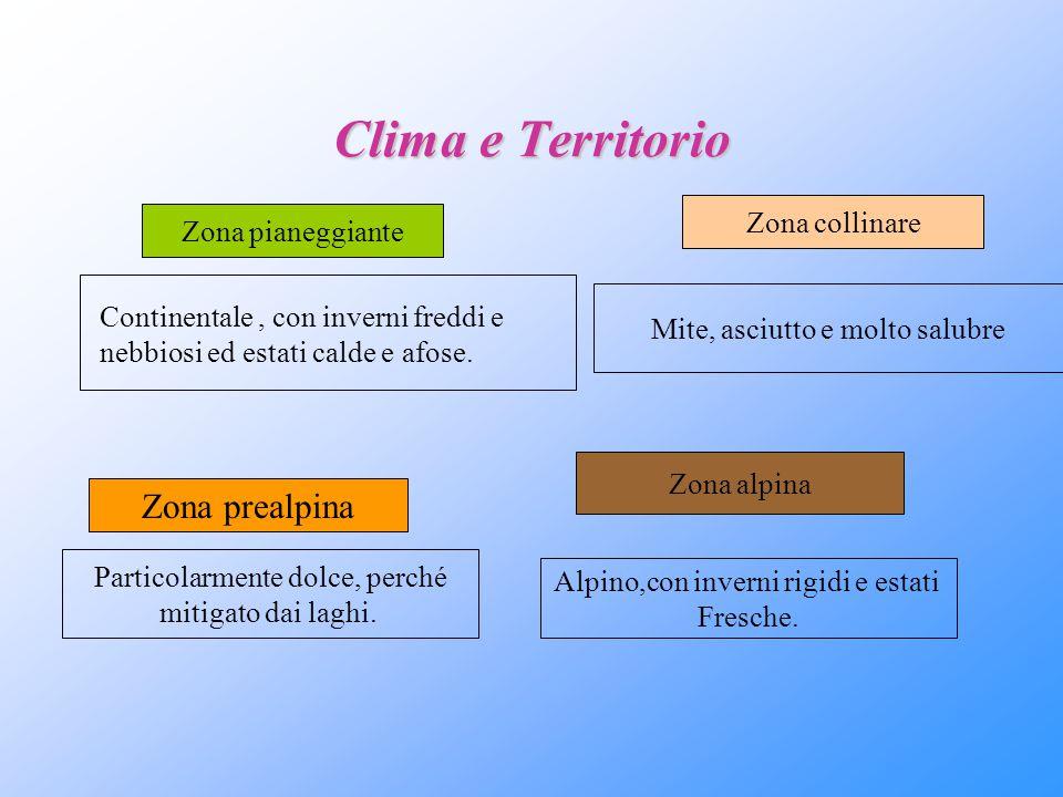 Clima e Territorio Zona prealpina Zona collinare Zona pianeggiante