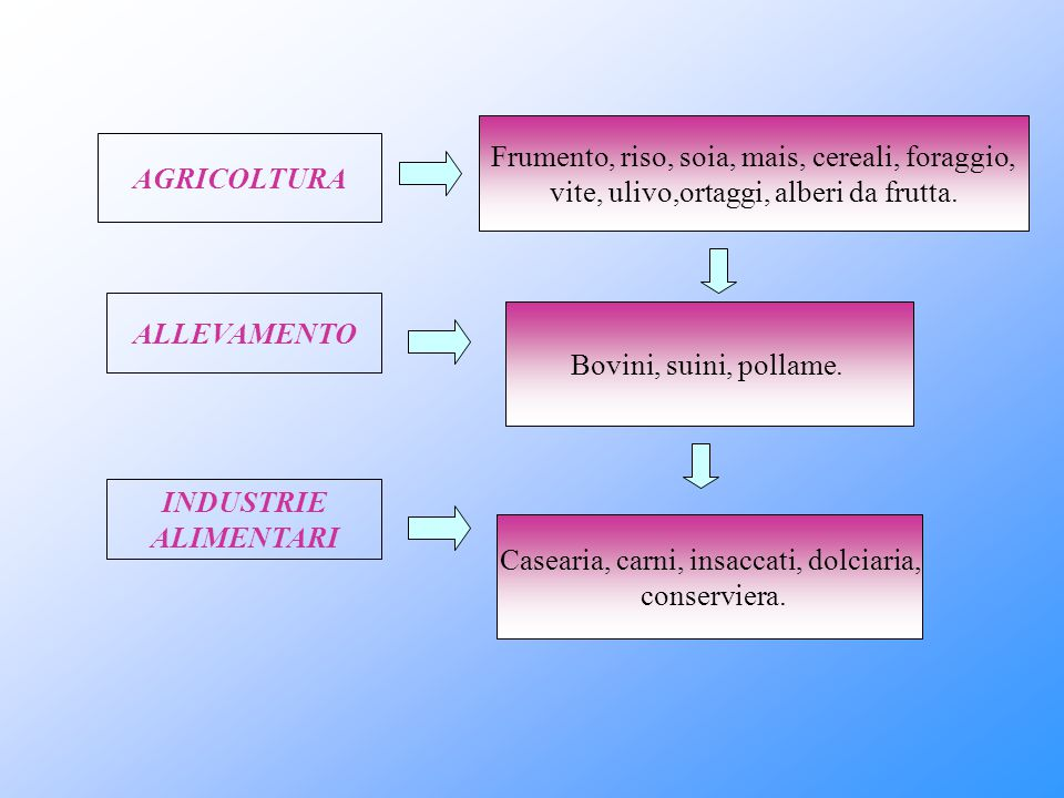 AGRICOLTURA ALLEVAMENTO INDUSTRIE ALIMENTARI