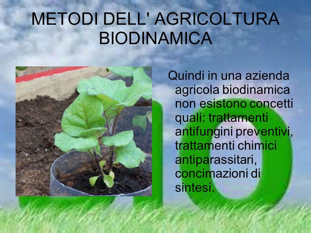 METODI DELL AGRICOLTURA BIODINAMICA