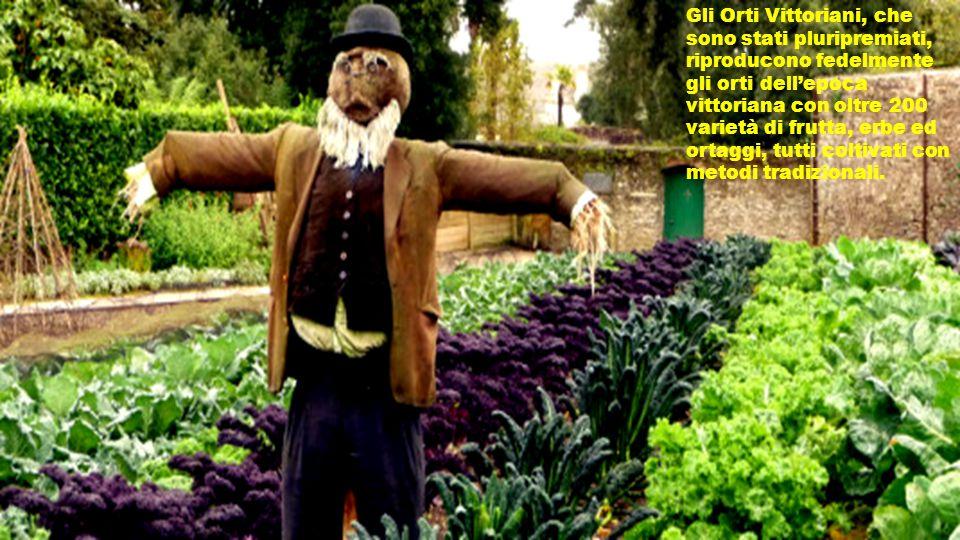 Gli Orti Vittoriani, che sono stati pluripremiati, riproducono fedelmente gli orti dell'epoca vittoriana con oltre 200 varietà di frutta, erbe ed ortaggi, tutti coltivati con metodi tradizionali.