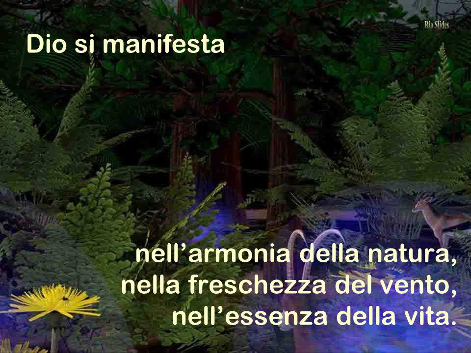 Dio si manifesta nell'armonia della natura, nella freschezza del vento, nell'essenza della vita.