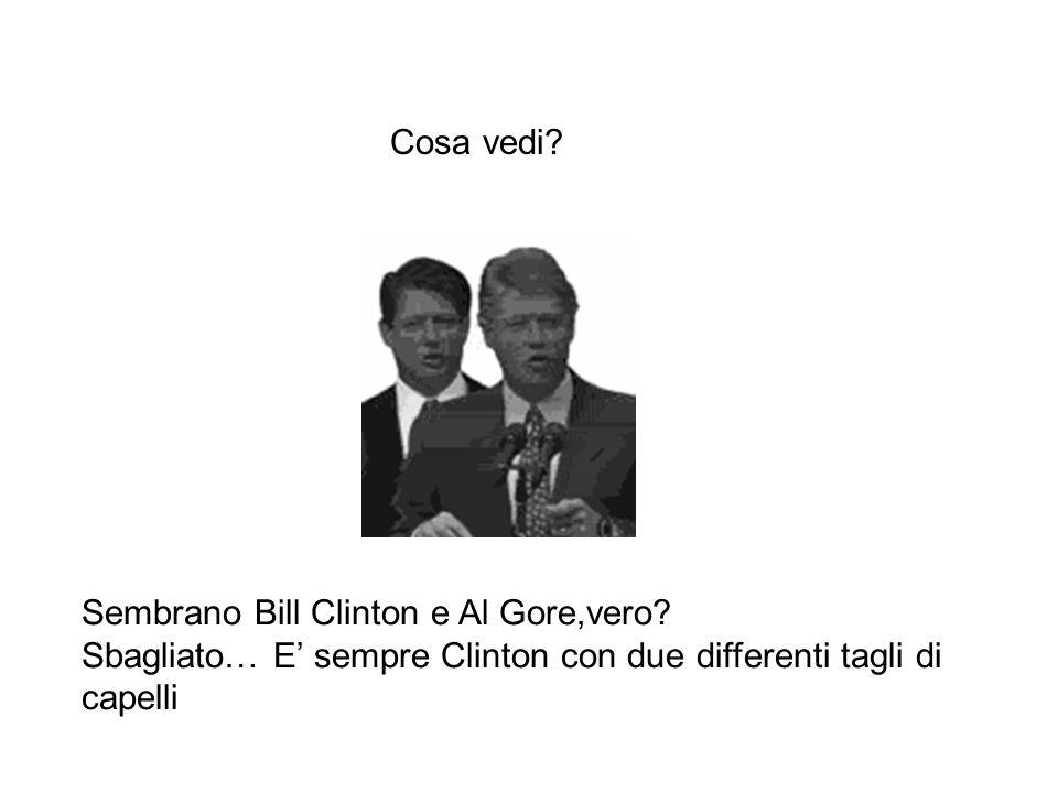 Cosa vedi. Sembrano Bill Clinton e Al Gore,vero.