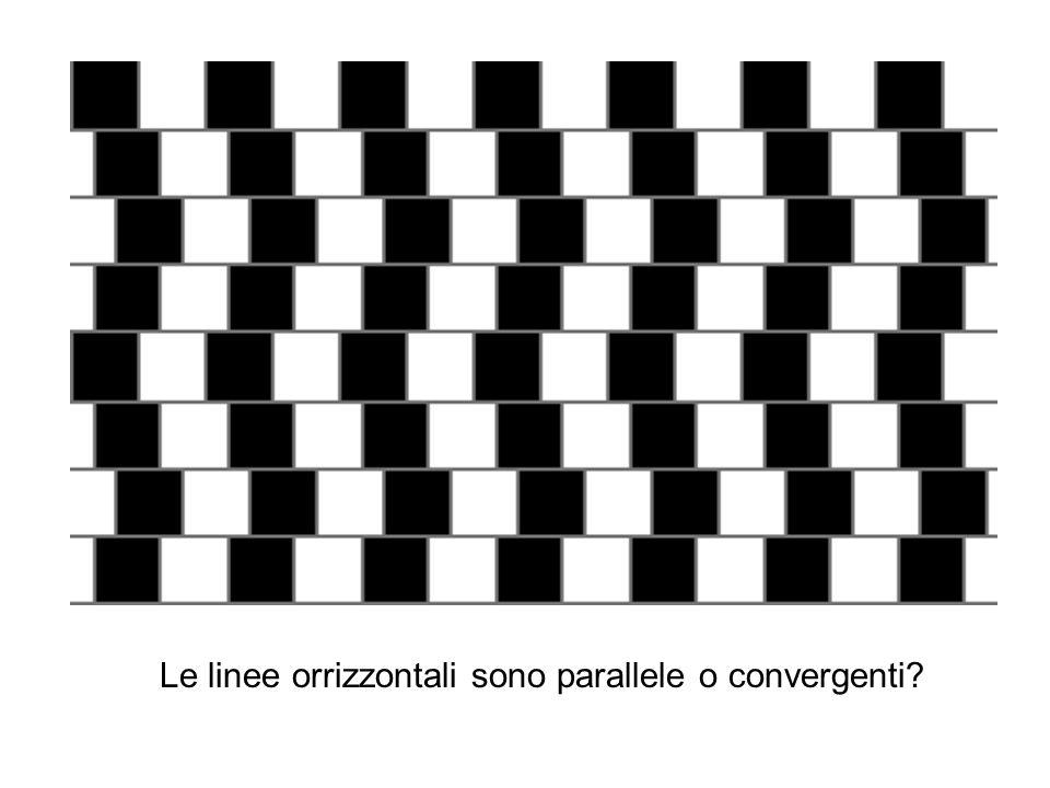 Le linee orrizzontali sono parallele o convergenti