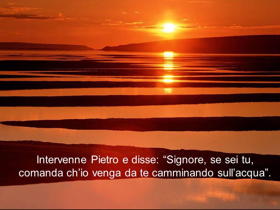 Intervenne Pietro e disse: Signore, se sei tu, comanda ch'io venga da te camminando sull'acqua .