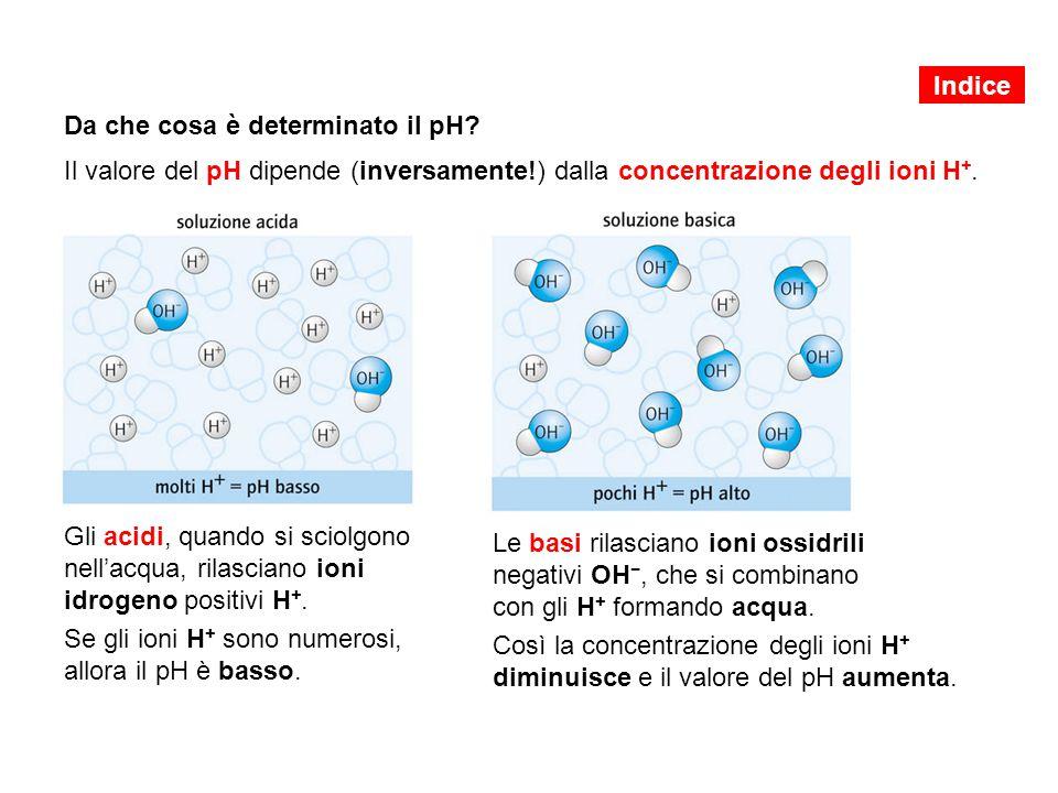 Se gli ioni H+ sono numerosi, allora il pH è basso.