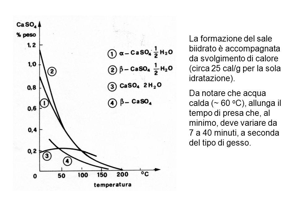 La formazione del sale biidrato è accompagnata da svolgimento di calore (circa 25 cal/g per la sola idratazione).
