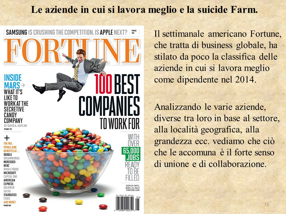 Le aziende in cui si lavora meglio e la suicide Farm.
