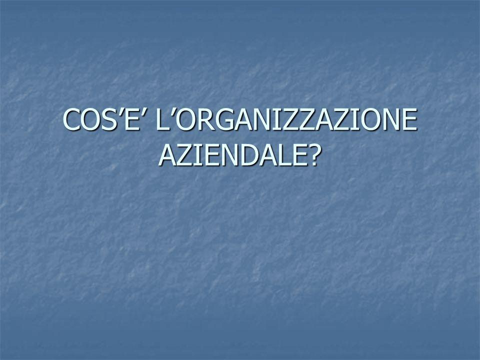 COS'E' L'ORGANIZZAZIONE AZIENDALE