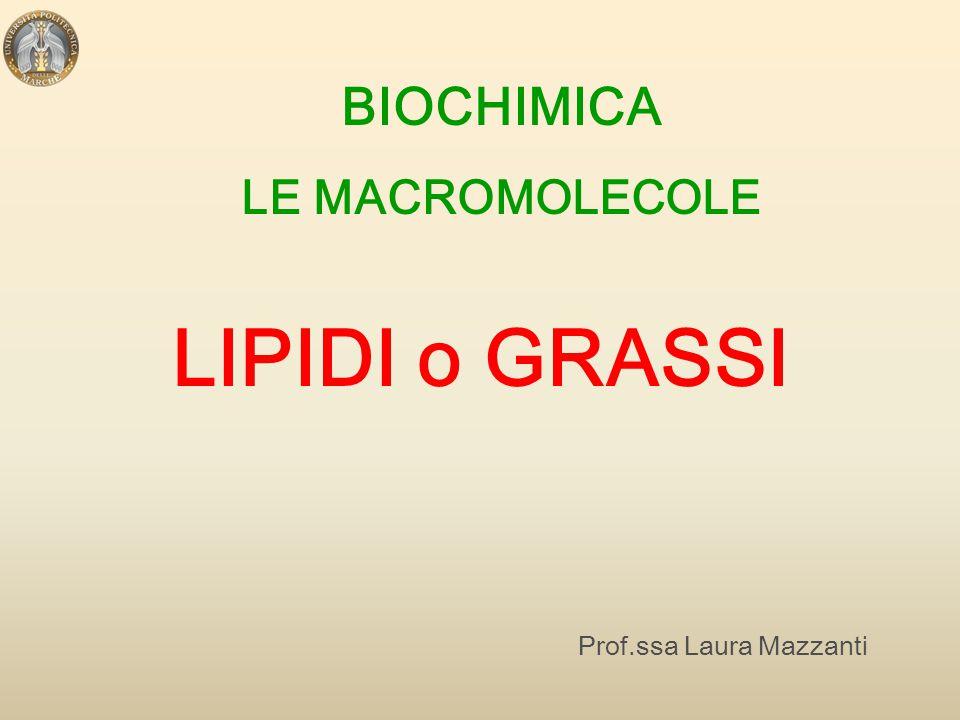 BIOCHIMICA LE MACROMOLECOLE LIPIDI o GRASSI Prof.ssa Laura Mazzanti