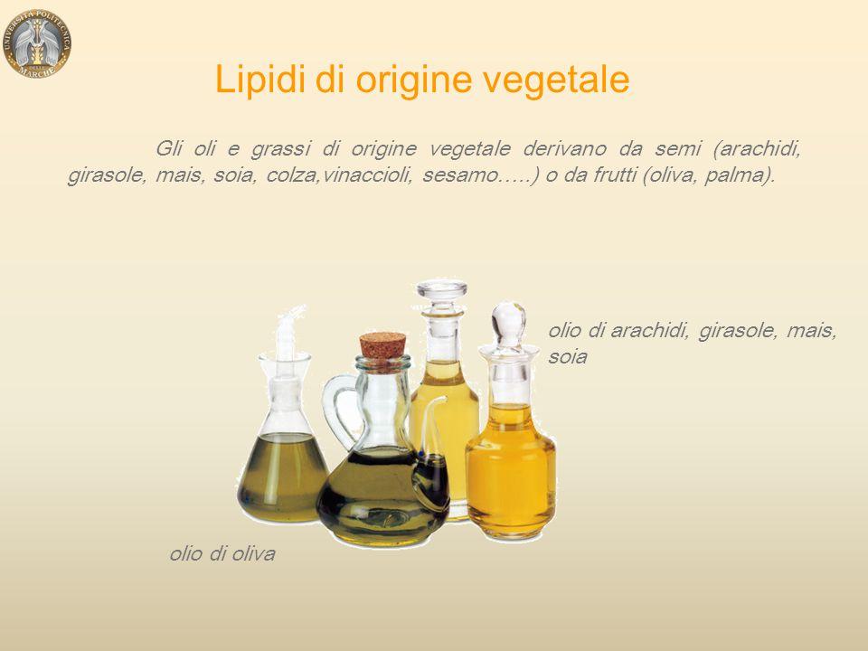 Lipidi di origine vegetale