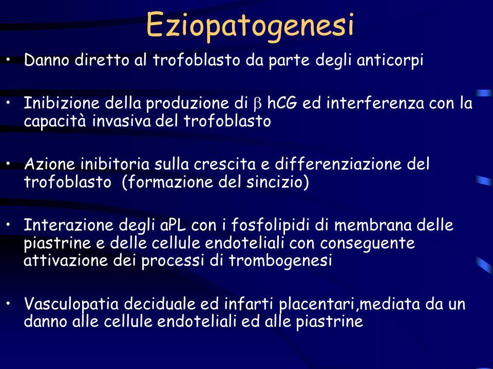 Eziopatogenesi Danno diretto al trofoblasto da parte degli anticorpi
