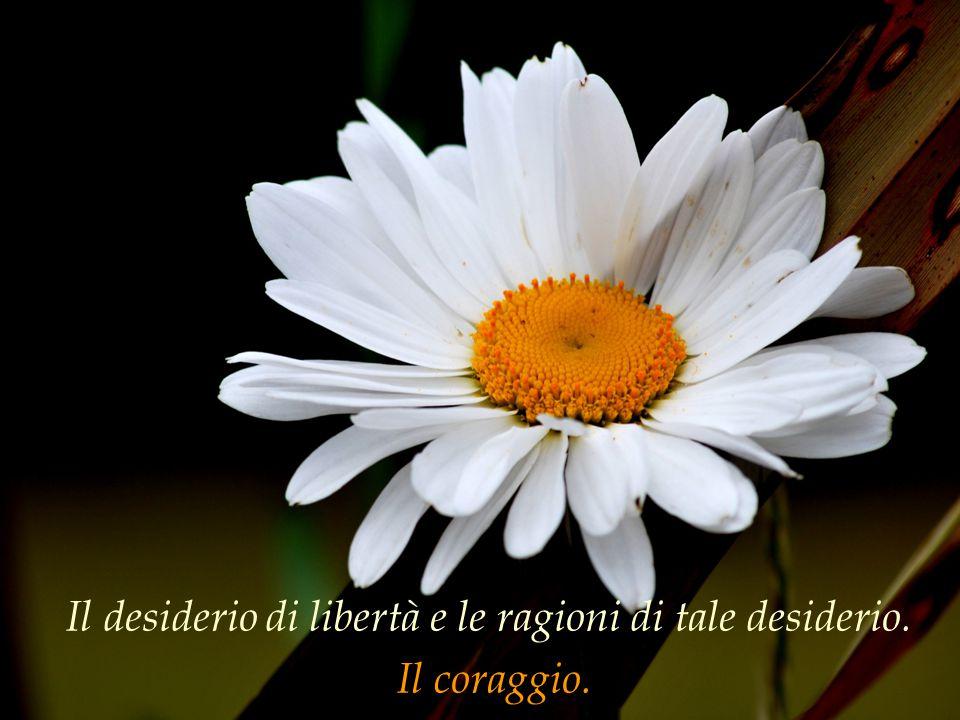 Il desiderio di libertà e le ragioni di tale desiderio.