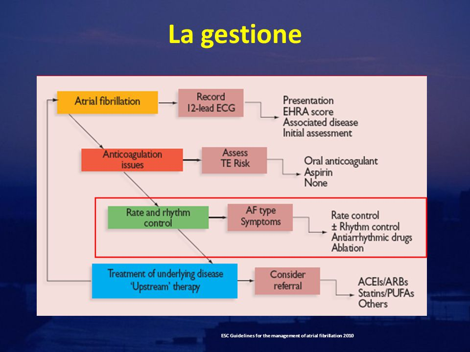 La gestione ESC Guidelines for the management of atrial fibrillation 2010