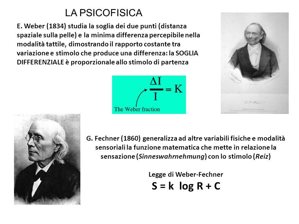 Legge di Weber-Fechner