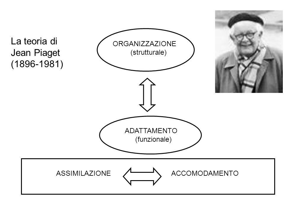 La teoria di Jean Piaget (1896-1981) ORGANIZZAZIONE (strutturale)