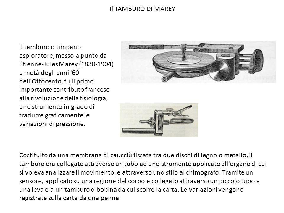Il TAMBURO DI MAREY
