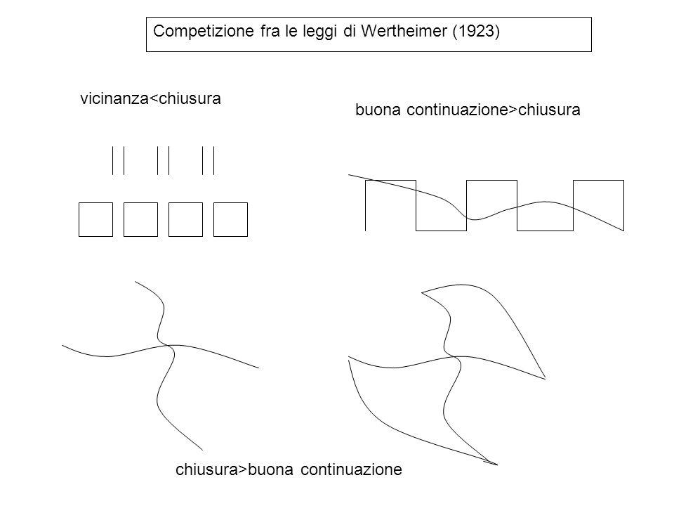 Competizione fra le leggi di Wertheimer (1923)