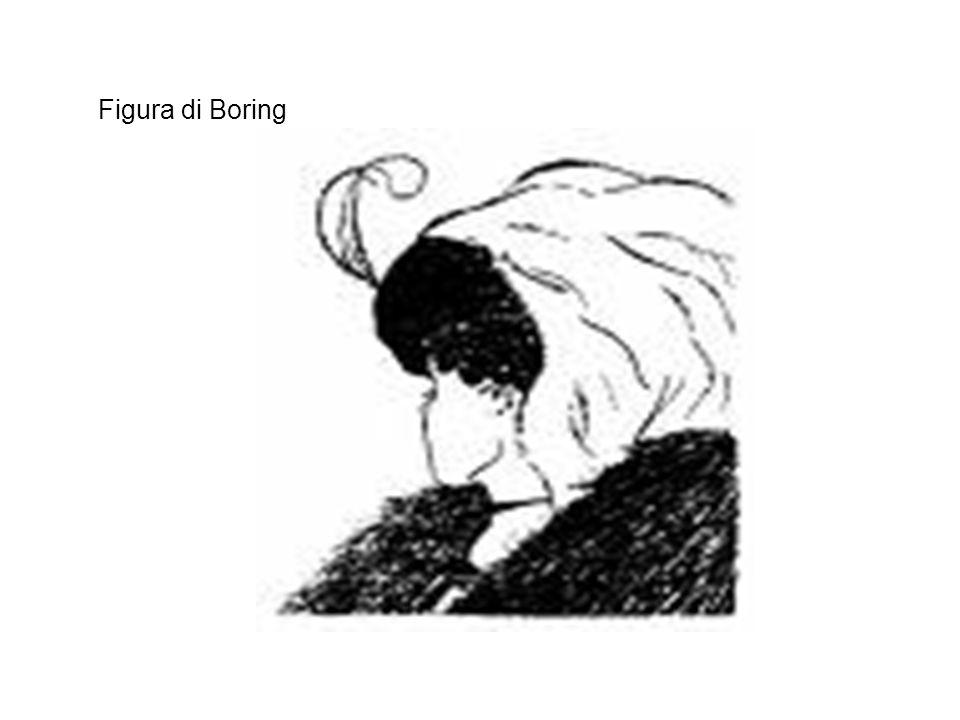 Figura di Boring