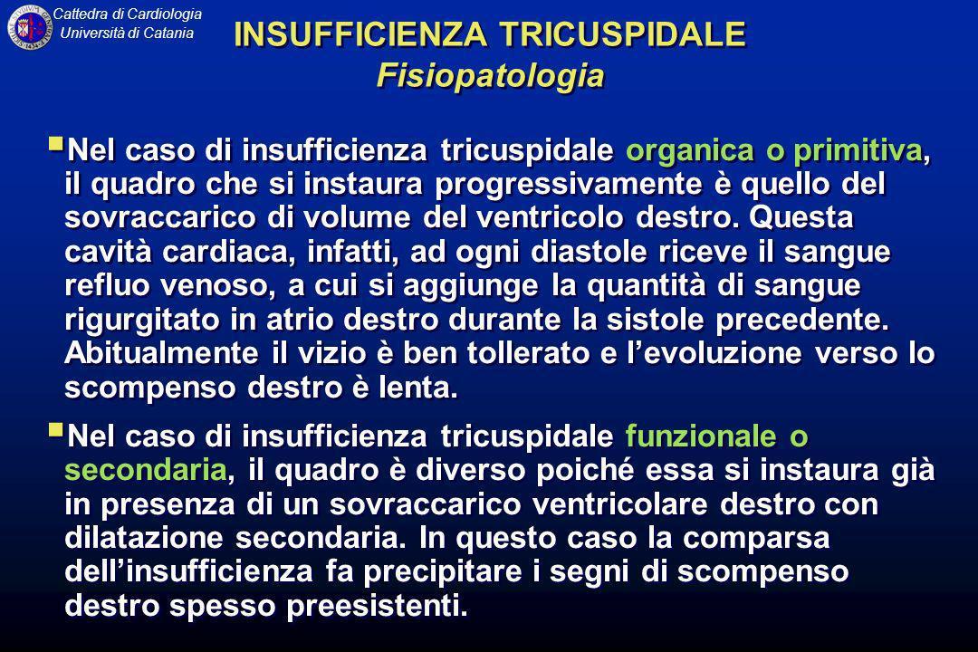 INSUFFICIENZA TRICUSPIDALE Fisiopatologia
