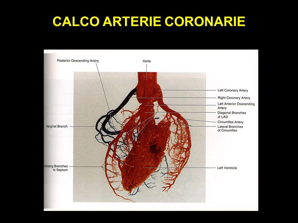 CALCO ARTERIE CORONARIE