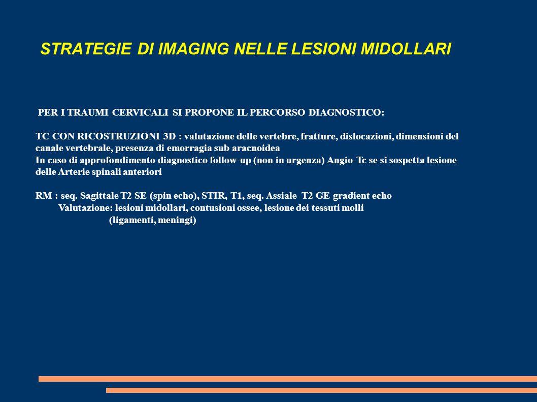 STRATEGIE DI IMAGING NELLE LESIONI MIDOLLARI