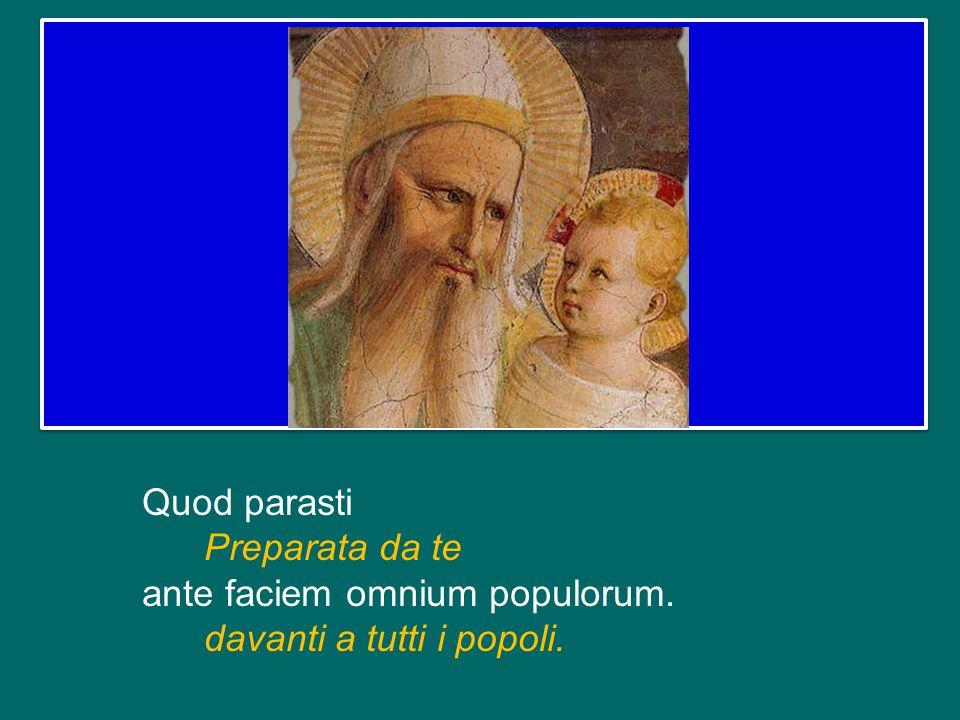 Quod parasti Preparata da te ante faciem omnium populorum
