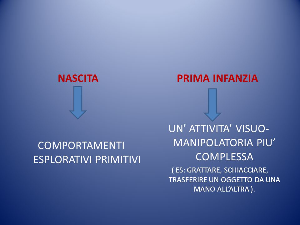 UN' ATTIVITA' VISUO-MANIPOLATORIA PIU' COMPLESSA
