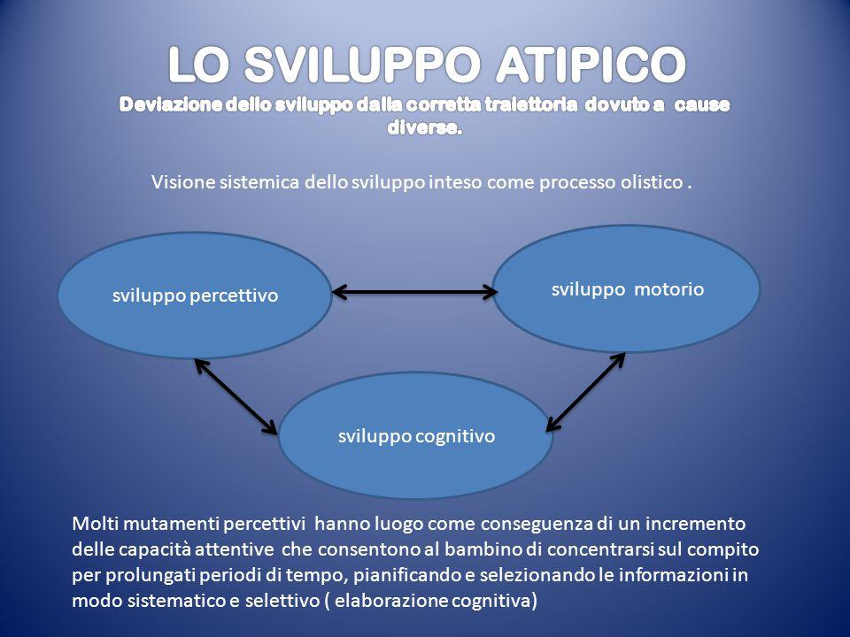 Visione sistemica dello sviluppo inteso come processo olistico .
