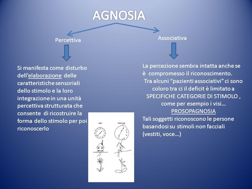AGNOSIA Associativa Percettiva