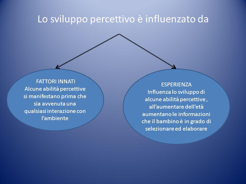 Lo sviluppo percettivo è influenzato da
