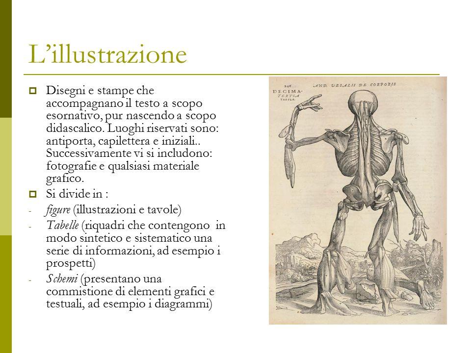 L'illustrazione