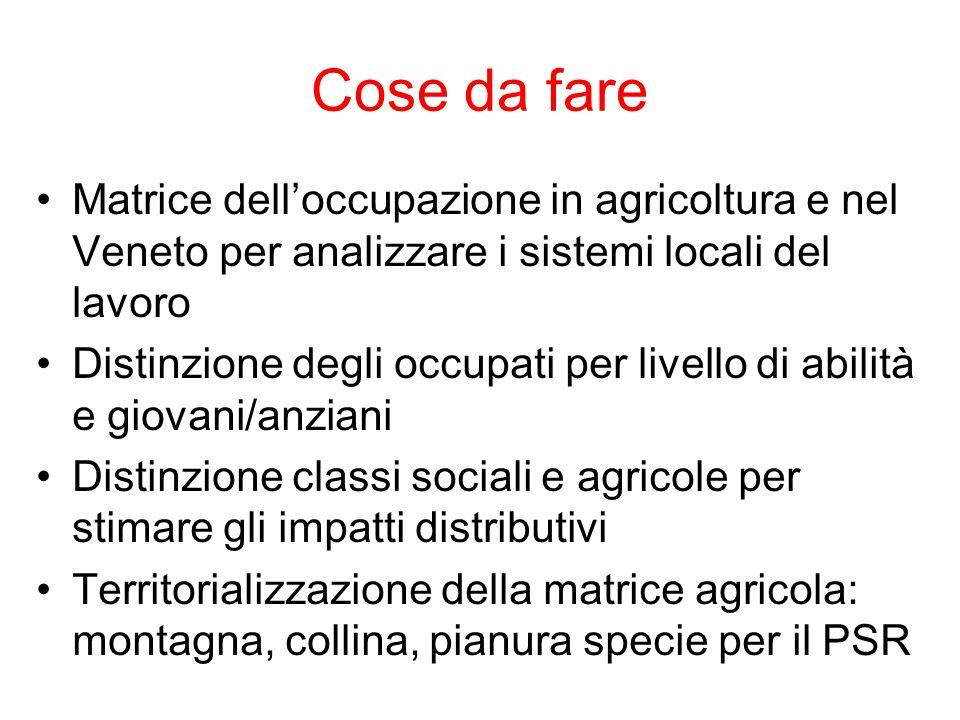 Cose da fare Matrice dell'occupazione in agricoltura e nel Veneto per analizzare i sistemi locali del lavoro.