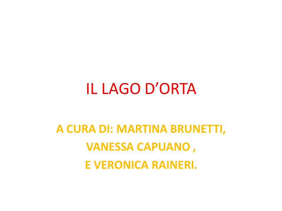 A CURA DI: MARTINA BRUNETTI, VANESSA CAPUANO , E VERONICA RAINERI.